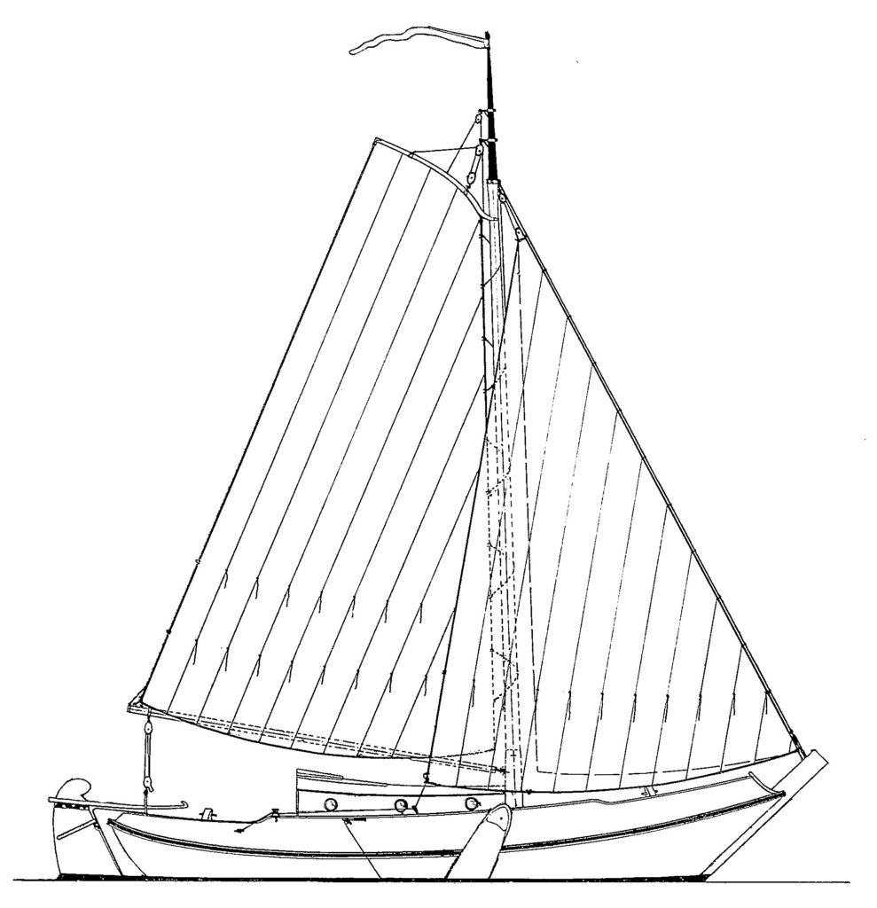 Schokker-984-profile